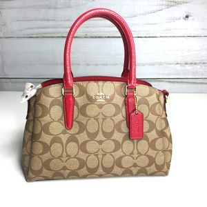 COACH Mini Sage Carryall NWT